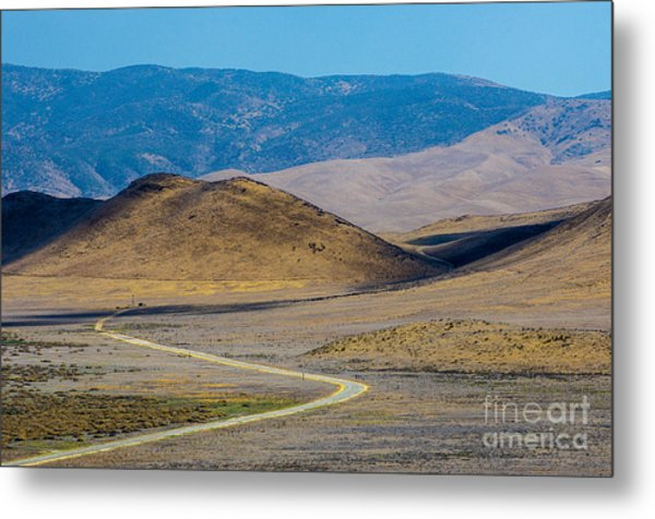 Carizzo Plains Nm  5-9655 Metal Print by Stephen Parker