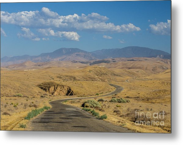 Carizzo Plains Nm  5-9664 Metal Print by Stephen Parker
