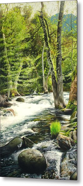 Carmel River Upper Watershed Metal Print by Logan Parsons