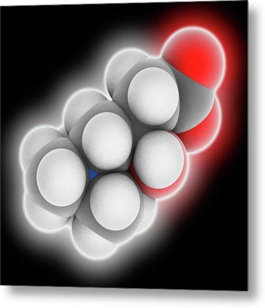 Carnitine Molecule Metal Print by Laguna Design