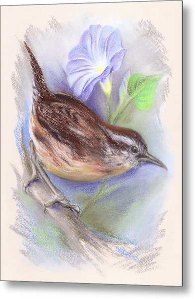 Carolina Wren With Morning Glory Metal Print
