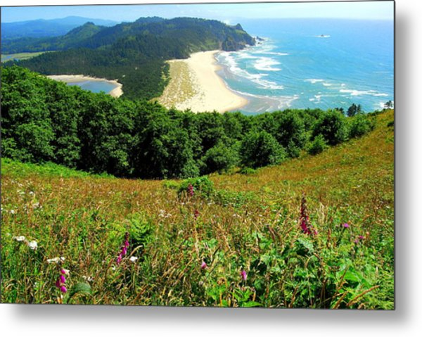Cascade Head Metal Print by Mamie Gunning