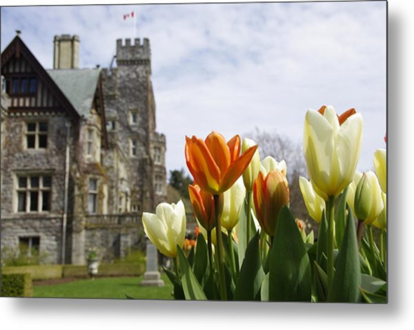 Castle Tulips Metal Print