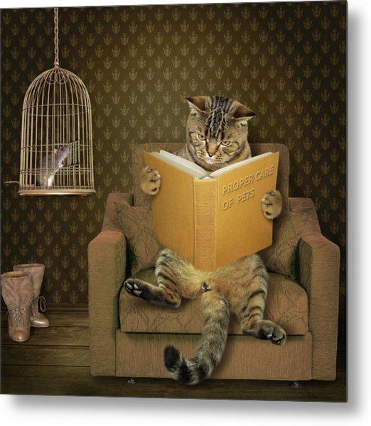 Cat And His Pet..... Metal Print by Iryna Kuznetsova (iridi)