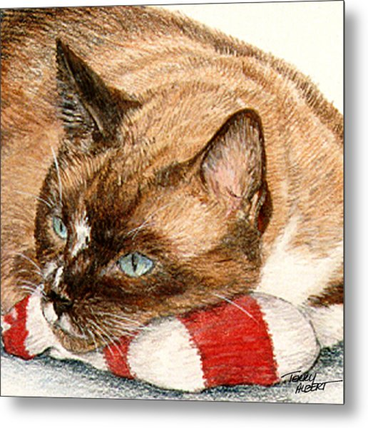 Cat And Toy Metal Print
