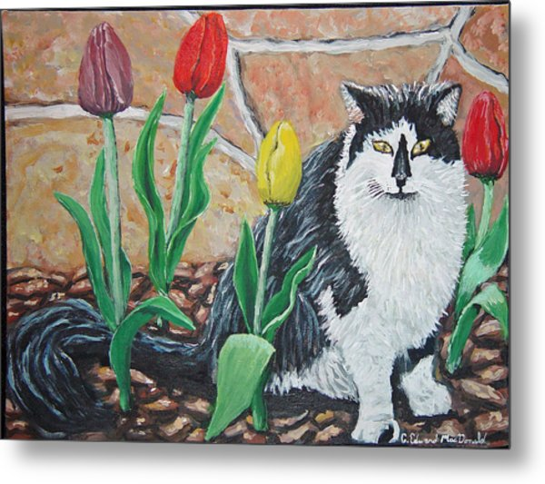 Cat By The Tulips  Metal Print