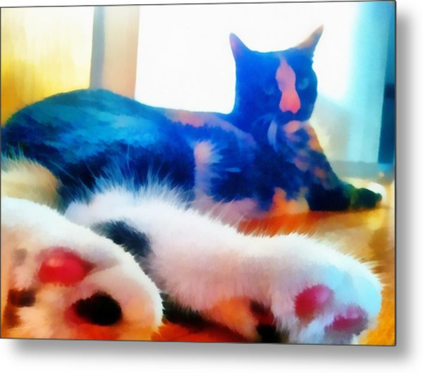 Cat Feet Metal Print