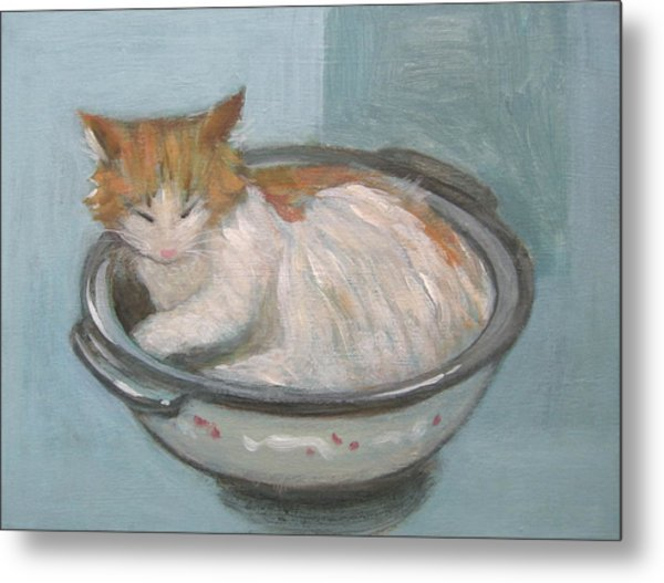 Cat In Casserole  Metal Print