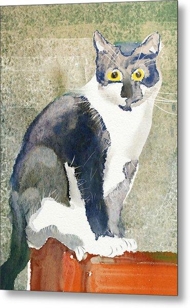 Cat On A Post Metal Print