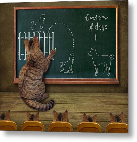Cat Teacher And His Pupils... :) Metal Print