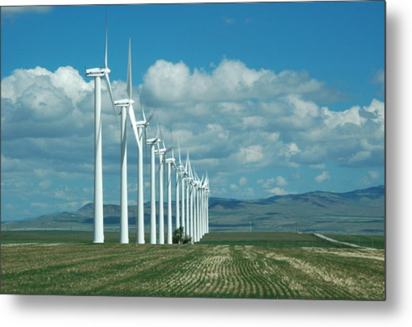Catch The Wind Metal Print by Clay and Gill Ross