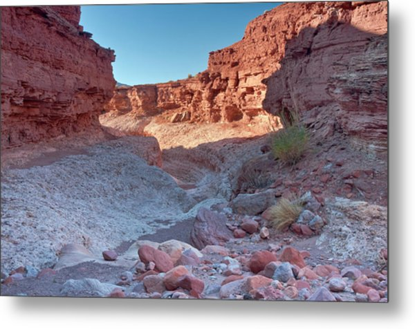 Cathedral Canyon Near Lees Ferry Metal Print by Witold Skrypczak