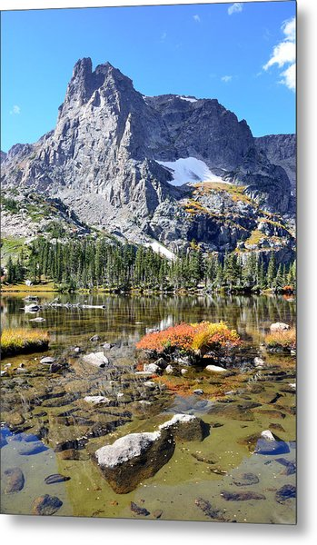 Cathedral In The Park-v Metal Print