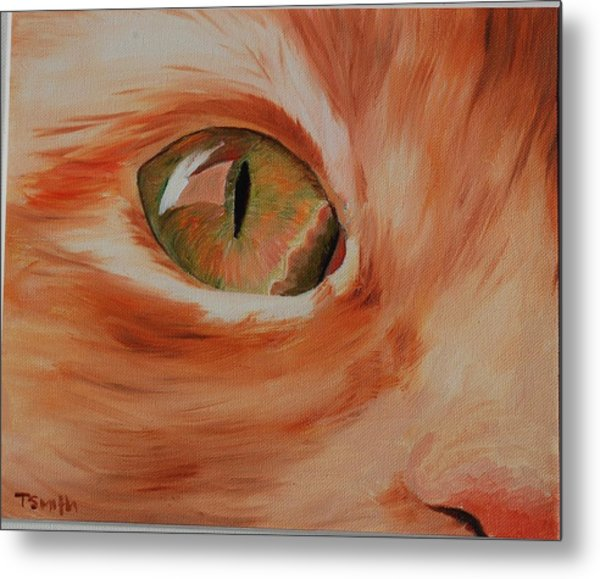 Cat's Eye Metal Print