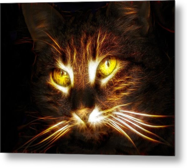 Cat's Eyes - Fractal Metal Print