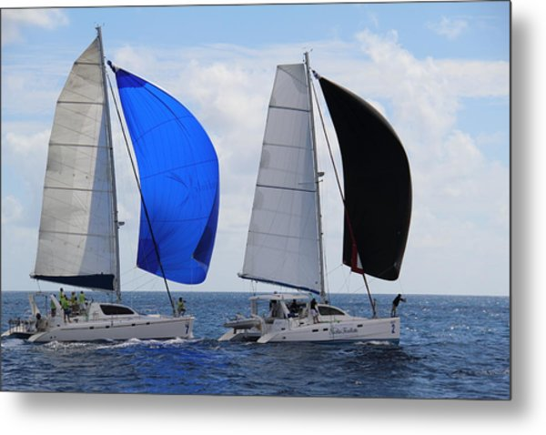 Cats With Spinnakers Metal Print