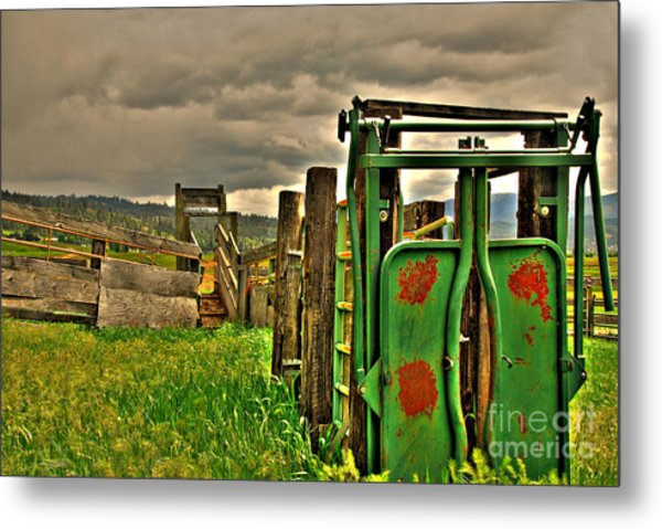 Cattle Chute Metal Print