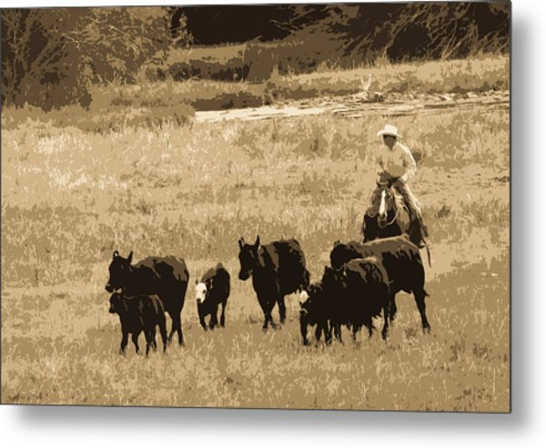Cattle Round Up Sepia Metal Print
