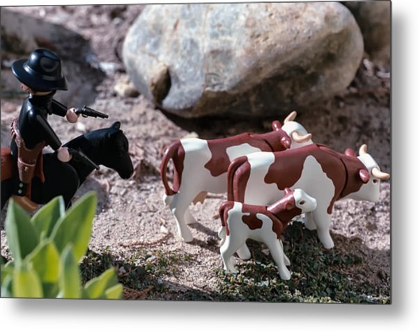 Cattle Rustler Metal Print