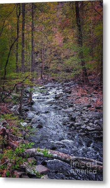 Cedar Falls Creek Metal Print