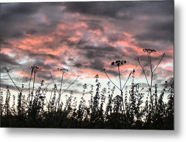 Celebrating Sunset Metal Print
