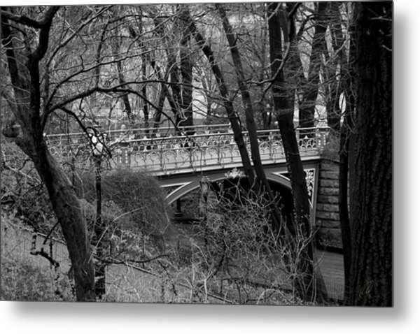 Central Park 2 Black And White Metal Print