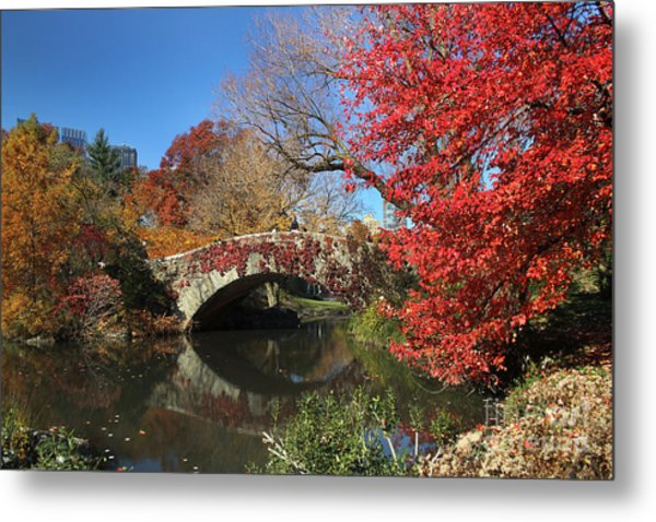 Central Park In The Fall-1 Metal Print