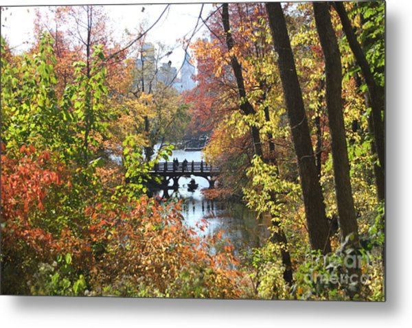 Central Park In The Fall-2 Metal Print