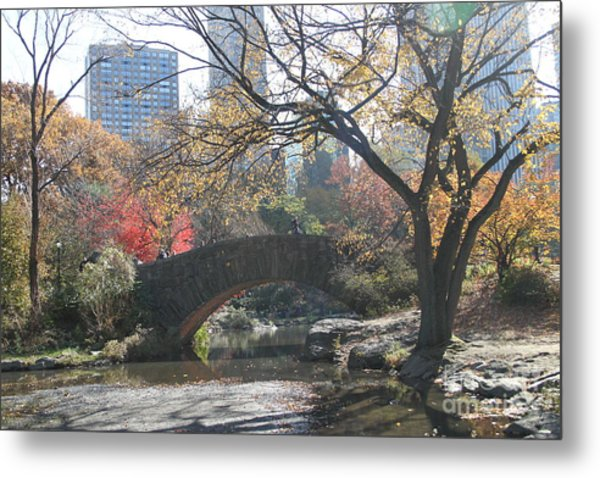 Central Park In The Fall-3 Metal Print