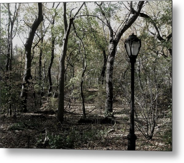 Central Park Lamppost Metal Print