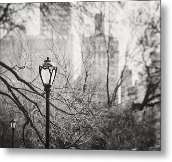 Central Park Lamppost In New York City Metal Print by Lisa Russo