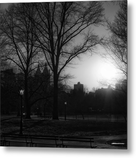 Central Park Sunset In Black And White 3 Metal Print