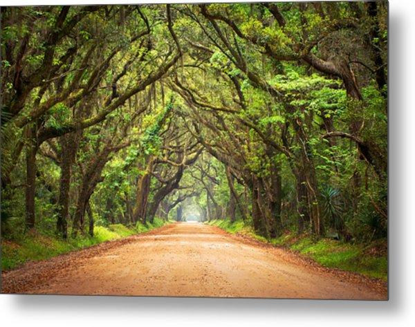 Charleston Sc Edisto Island - Botany Bay Road Metal Print