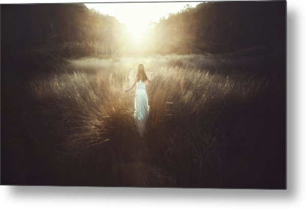 Chase The Sun Metal Print by Terry F