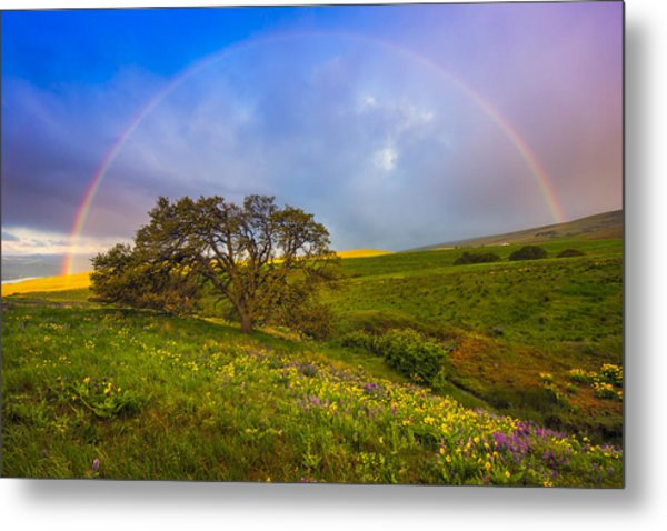 Chasing Rainbows Metal Print