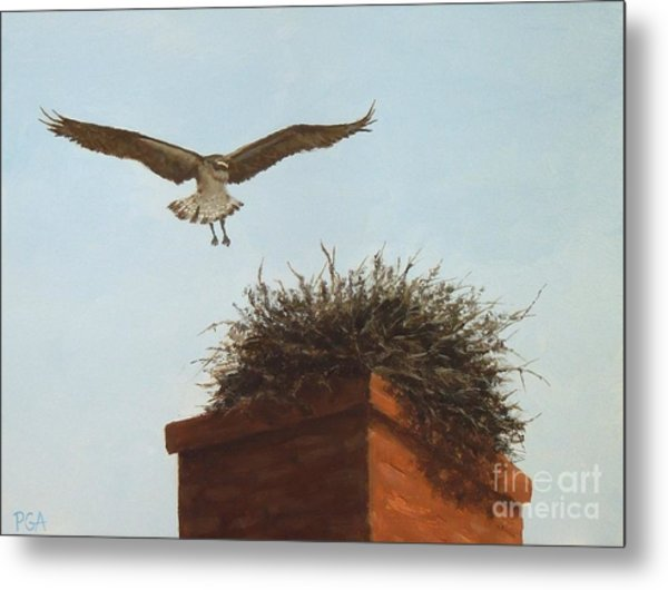 Checking The Nest Metal Print