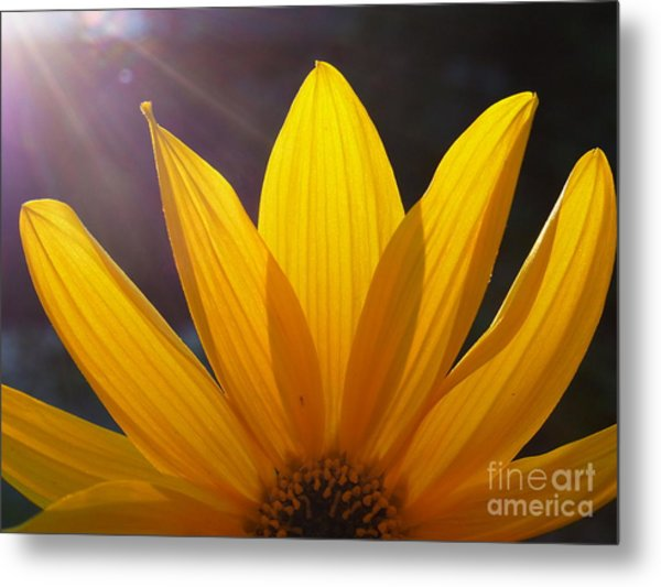 Cheer Up Metal Print