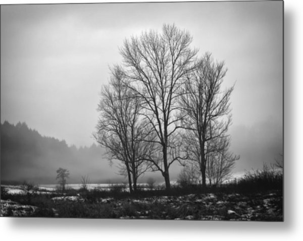 Cheese House Road Trees Metal Print