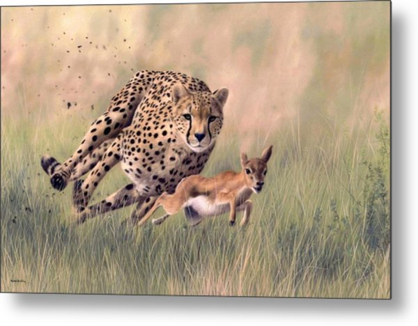 Cheetah And Gazelle Painting Metal Print