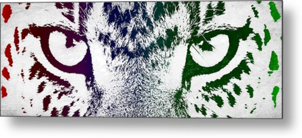 Cheetah Eyes Metal Print