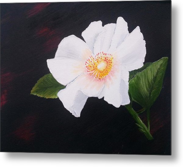 Cherokee Rose Metal Print
