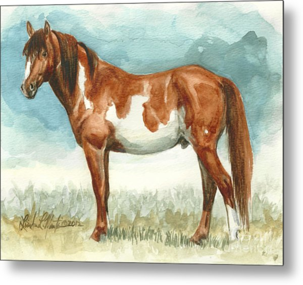 Cherokee Wild Stallion Of Sand Wash Basin Metal Print