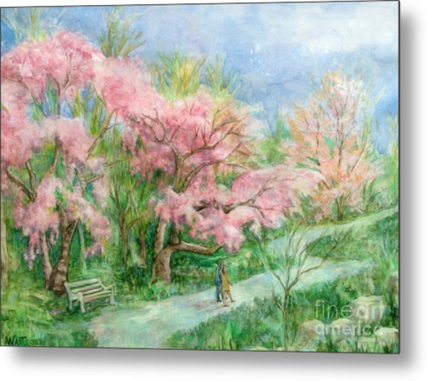 Cherry Blossom Walk Metal Print