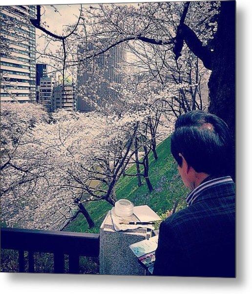 Cherry Blossoms ( #sakura - #桜 ) At Metal Print
