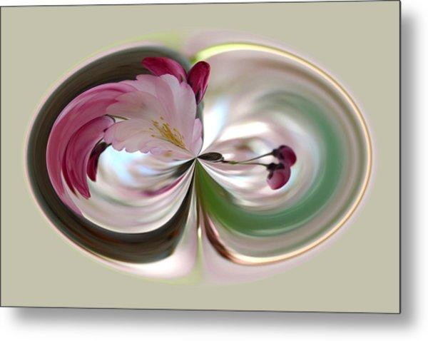 Cherry Tree Blossom Series 802 Metal Print