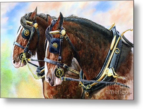 Chestnut Shire Horses Metal Print by Anthony Forster