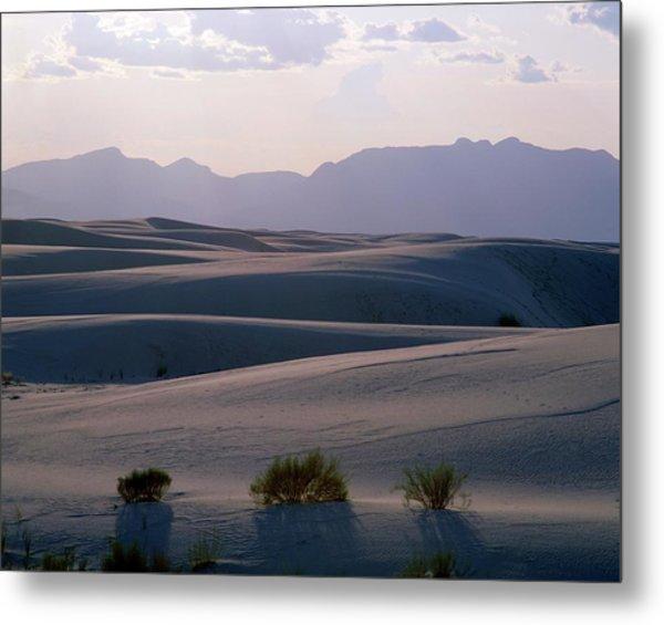Chichuahan Desert Metal Print