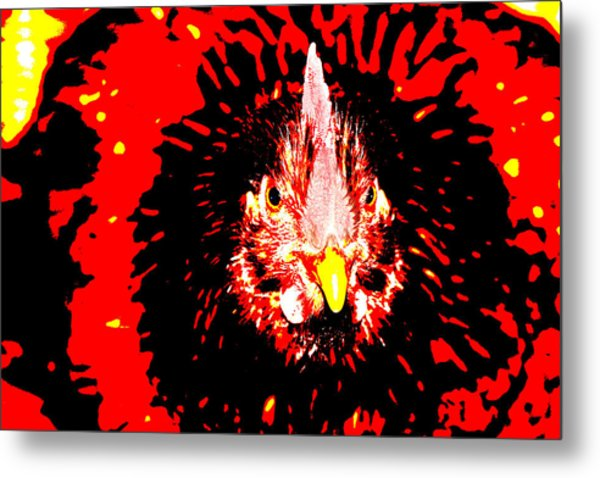Chicken Head Metal Print by Frank Savarese