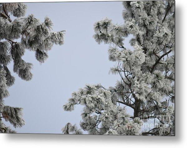 Chill Tree Metal Print