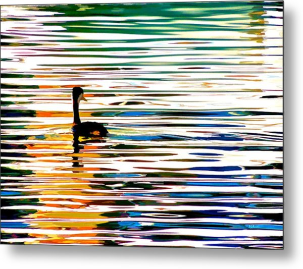 Chillin' Metal Print by Brian D Meredith